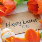 2016 Easter Lowest Promotion: 30% OFF Blu-ray/DVD Ripping/Copying